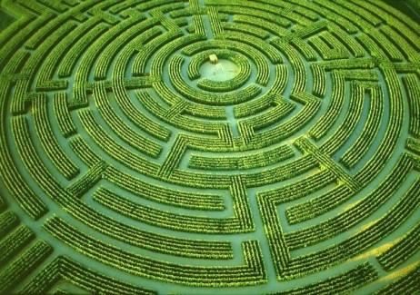 maze top view