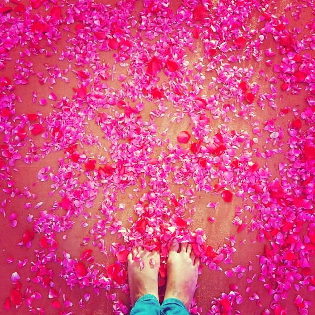Roses and Feet by Tanushree Vaidya
